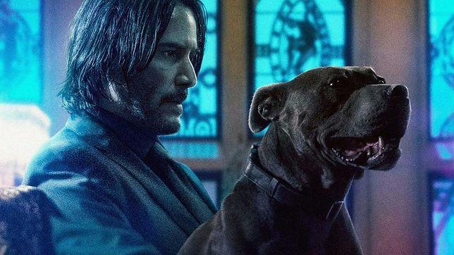 """""""John Wick 5"""": Lionsgate zapowiedziało dwie części filmu z Keanu Reevesem"""