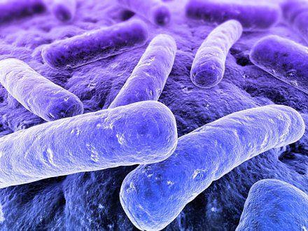 Dlaczego bakterie są groźne