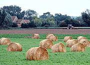 Od środy wchodzi w życie ustawa o składkach zdrowotnych rolników