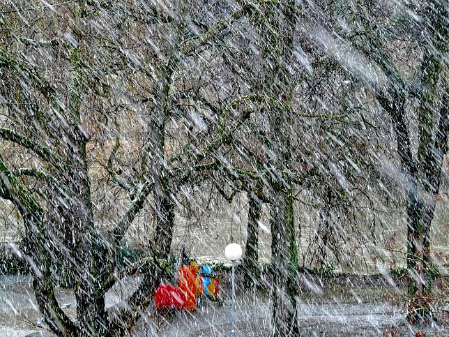 Nad Polskę nadciągają  wichury i śnieżyce