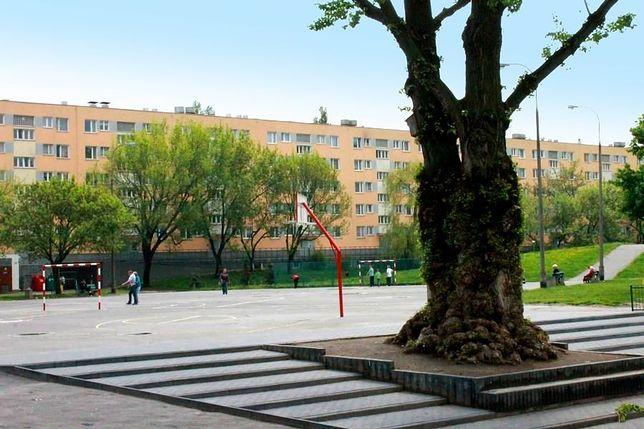 """Nowy pełnomocnik w stolicy. Prezydent powołała """"miejskiego ogrodnika"""""""