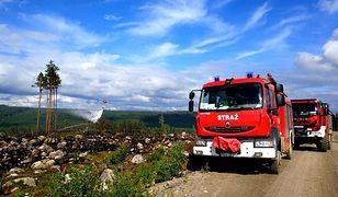 Polacy walczą z ogniem w Szwecji