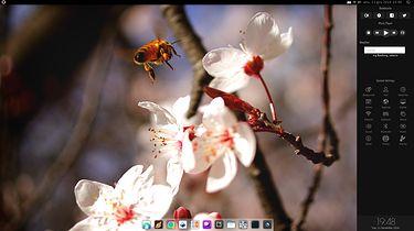 BlankOn Linux — ubogi krewny deepina