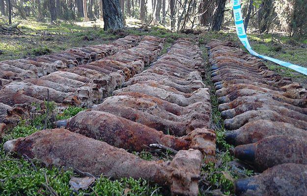 CBŚP: arsenał w lesie na Mazowszu - ponad 200 kg materiałów wybuchowych