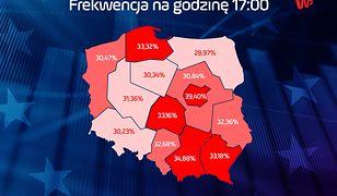 Wybory do Europarlamentu 2019. PKW podała frekwencję na godzinę 17.