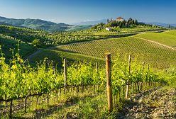Toskania. Zakochaj się w magicznym regionie Włoch