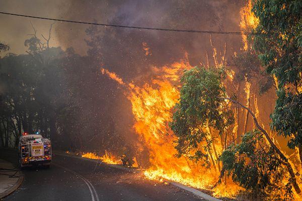 Pożary lasów w Australii. Zginął mężczyzna, 49 domów spalonych