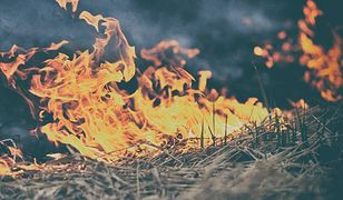 Mazowsze. W weekend strażacy musieli wyjeżdżać do pożaru wiele razy