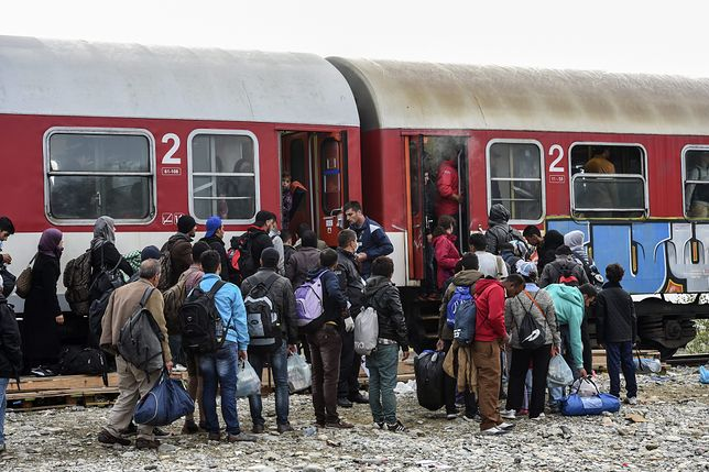 Wielkie miasta gotowe na współpracę ws. migracji. Jest wyraźna deklaracja