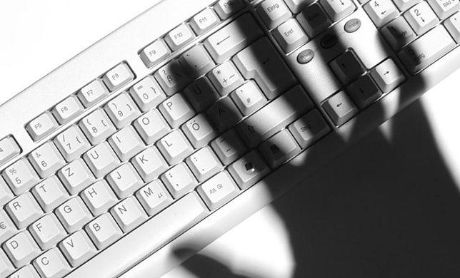 Raport: Polscy internauci - świadomi i skąpi