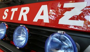 Nowostawy Dolne. Pożar samochodu na autostradzie A2