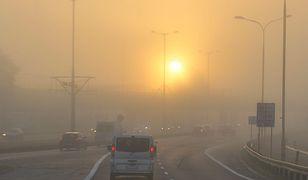 Piątek będzie kolejnym słonecznym dniem z mgłami o poranku