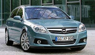Opel Signum: czy zakup luksusowego hatchbacka ma sens?