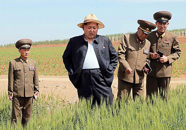 Kim Dzong Un na farmie ryżu - zdjęcia