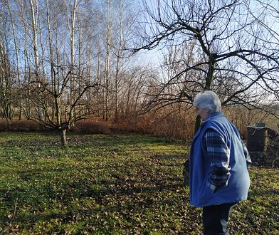 Baranów. Gmina poświęcona dla Polski