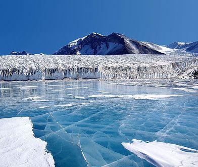 Naukowcy zaskoczeni odkryciem na Antarktydzie. W lodzie znaleźli marsjański minerał