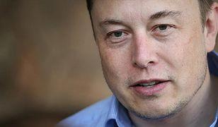 Elon Musk już wkrótce przekaże więcej informacji o Neuralink.