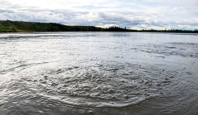 Jezioro Esieh na Alasce wydziela gazy. Tyle, co 6 tysięcy krów