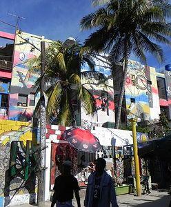 """""""Drugiej rewolucji nie będzie"""". Polka o życiu na Kubie"""