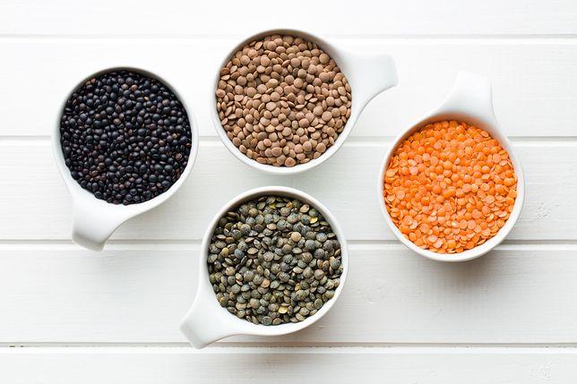 Odkryj dania z soczewicy w swojej kuchni