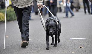 Niewidomi pozwali restaurację za niewpuszczenie ich z psami