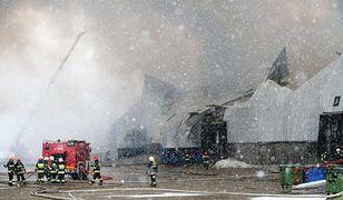 Ogień zniszczył ogromny magazyn mieszczący się przy ul. Annopol 3 w Warszawie