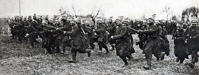 1. Dywizja Ukraińska sformowana wiosną 1918 r.