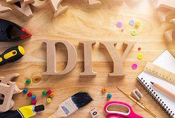 Zabawki dla psa DIY. Jak zrobić gadżety dla pupila w domu?