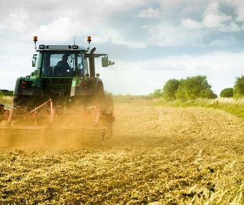 Ruta Śpiewak: wejście do UE spowodowało zasadnicze zmiany polskiej wsi