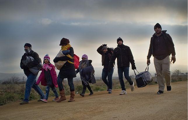 Zaskakujące wyniki sondażu. Polacy wolą wyjść z Unii niż przyjąć uchodźców