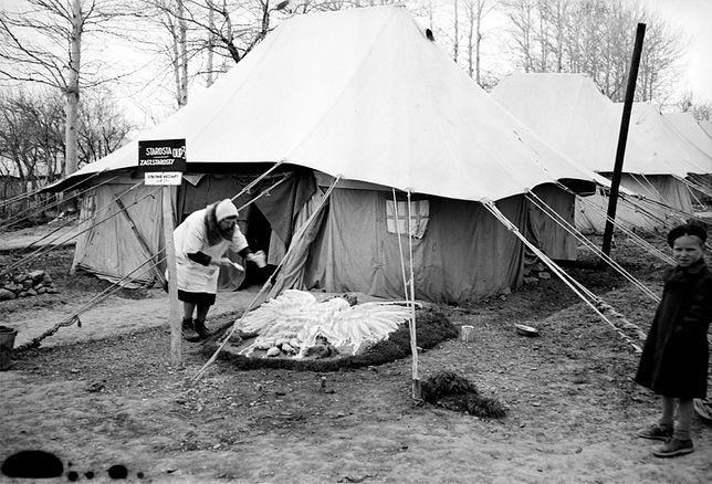 Polka maluje białego orła przed namiotem w obozie dla Polaków w Iranie, prowadzonym przez Czerwony Krzyż. Rok 1943