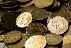 KNF zawiesiła działalność SKOK Wołomin