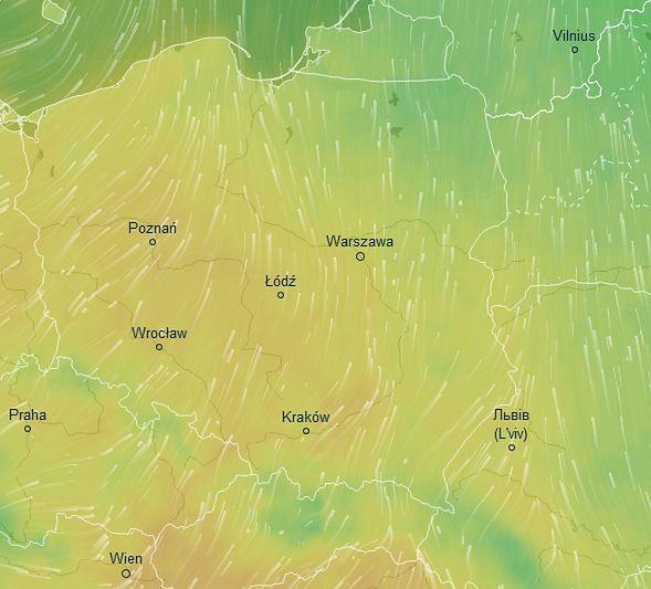 Termometry wskażą dwucyfrowe wyniki