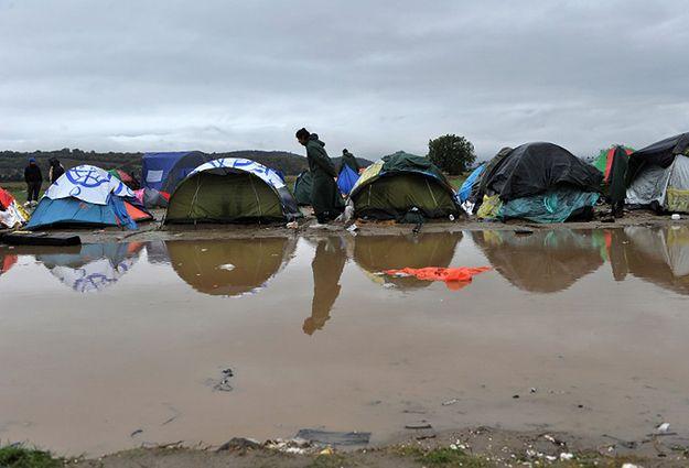 Tymczasowy obóz uchodźców w Grecji.
