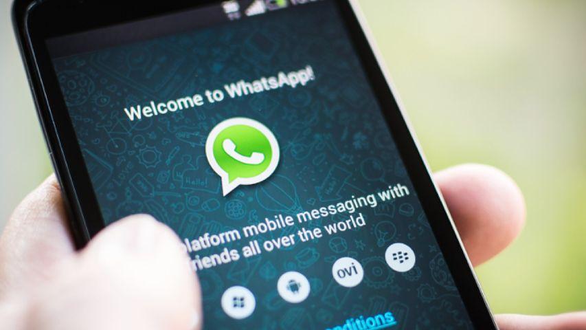 Nowy WhatsApp: wysyłanie GIF-ów i zwiększony limit na przesyłanie plików