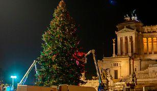 Włochy - zniszczone choinki udekorują domy na Święta Bożego Narodzenia.