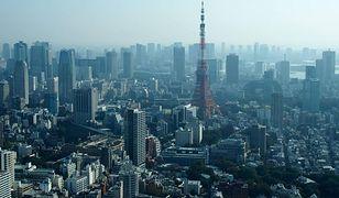 Japonia wg Katarzyny Pąk - opowieści o jedzeniu, ogrodach i japońskich toaletach