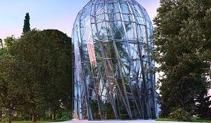 Prace nad nowym kształtem palmiarni zakończą się najwcześniej w drugiej połowie 2020 r.