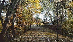 Park Kaskada przy Instytucie Ochrony Środowiska