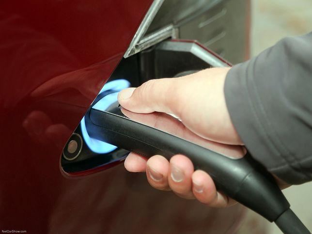 Auta elektryczne i hybrydy coraz tańsze. Tak wynika z analizy niemieckich badaczy