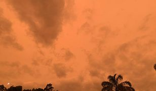 Oto skutek pożarów w Australii - niebo nad Nową Zelandią