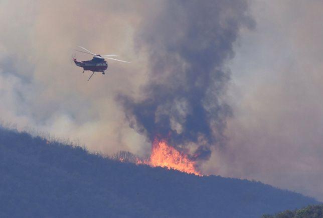 Prawie 40 tys. ewakuowanych. Pożary lasów w Kanadzie