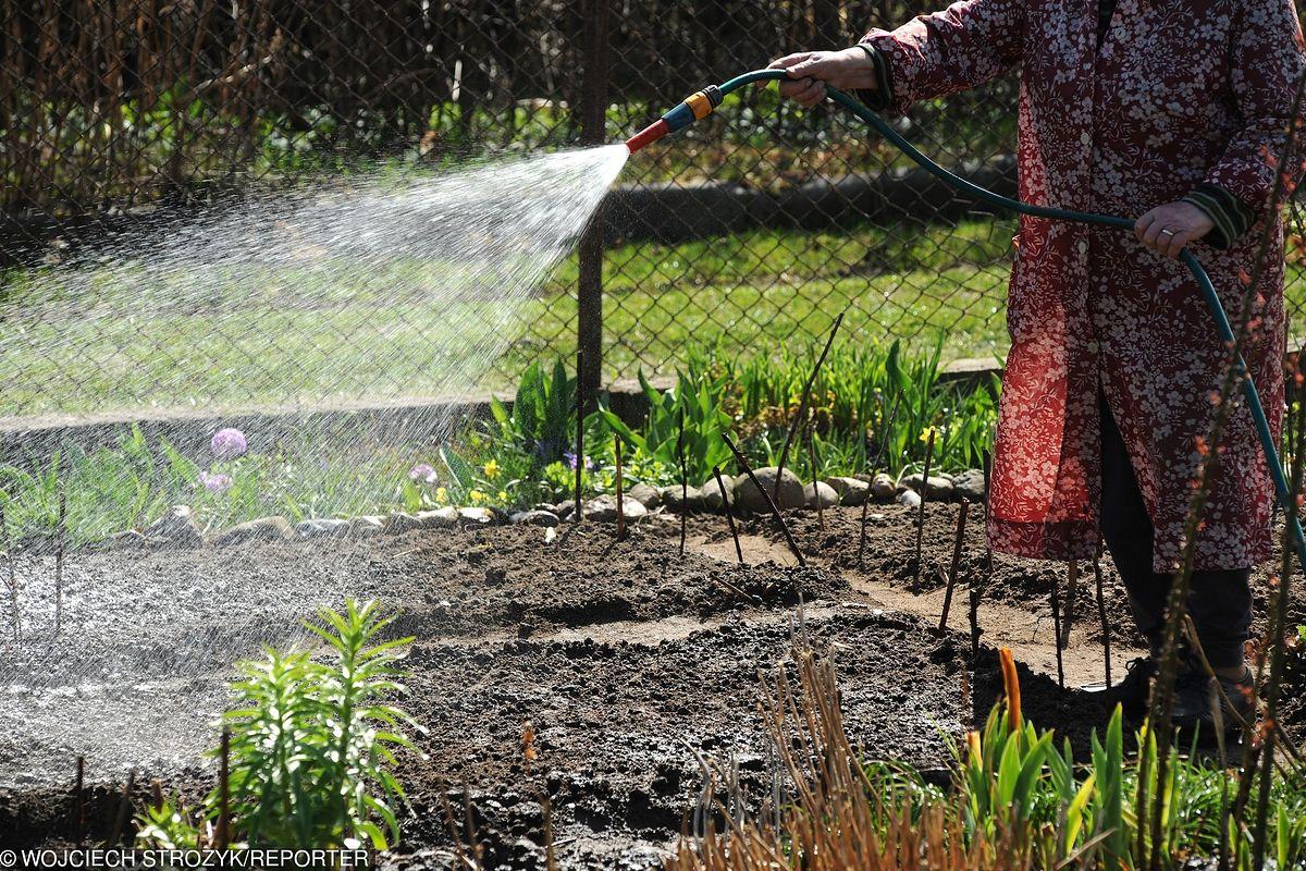Mieszkańcy dostaną po kieszeniach. Cena wody do podlewania ogrodu w górę o 2 tys. procent