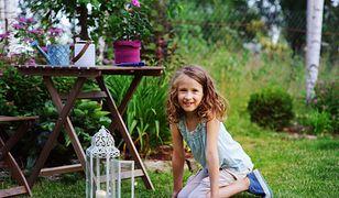 Ozdobne latarenki udekorują mieszkanie lub ogród - możemy je postawić w dowolnym miejscu