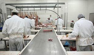 Mięso z chorych krów trafiło na rynek. Zakład został zamknięty, produkty są wycofywane z całej Europy