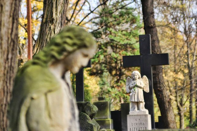 Pierwsza linia cmentarna wyrusza na trasę