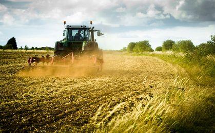 Ziemia rolna nadal drożeje. Zysk - nawet 400 proc.