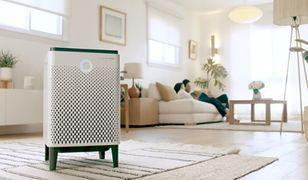 5 znaków ostrzegawczych świadczących o niskiej jakości powietrza w Twoim domu