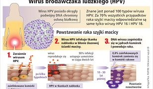 HPV? A co to jest?!