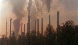 Donald Trump to katastrofa dla Ziemi?